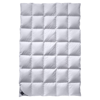 Одеяло пуховое Billerbeck Alina Light 200/200 см.